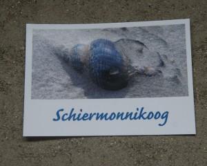 Ansichtkaarten, Schiermonnikoog